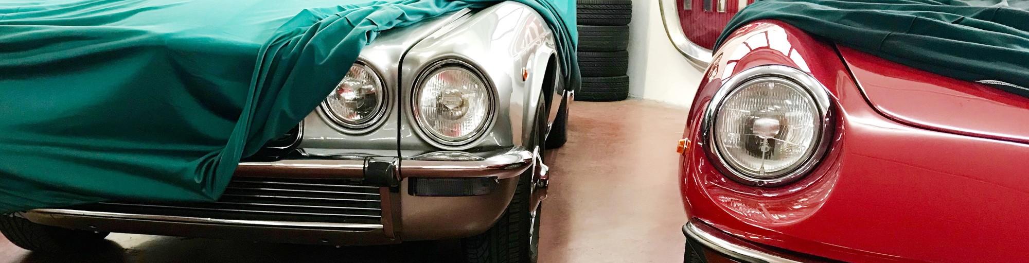 Collezione di auto classiche e vintage in vendita - Passione Classica